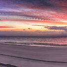 Pink Shorefront Sunrise by Lawrie McConnell