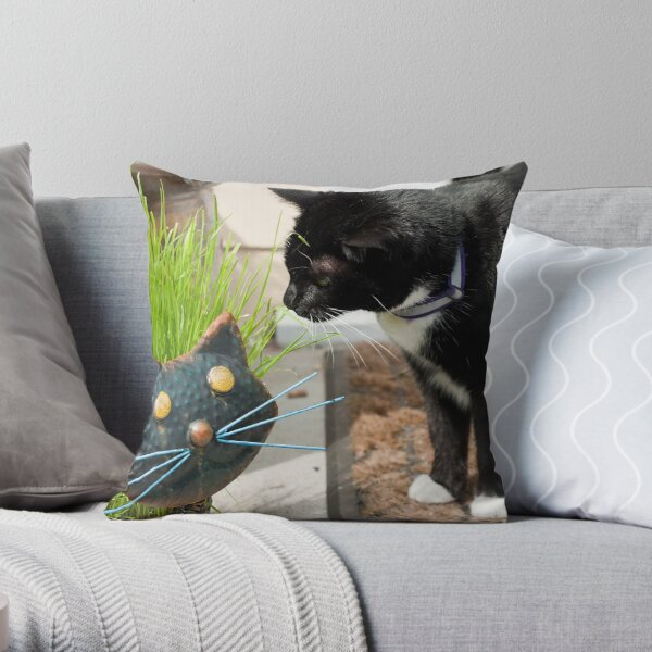 First Introduction Throw Pillow