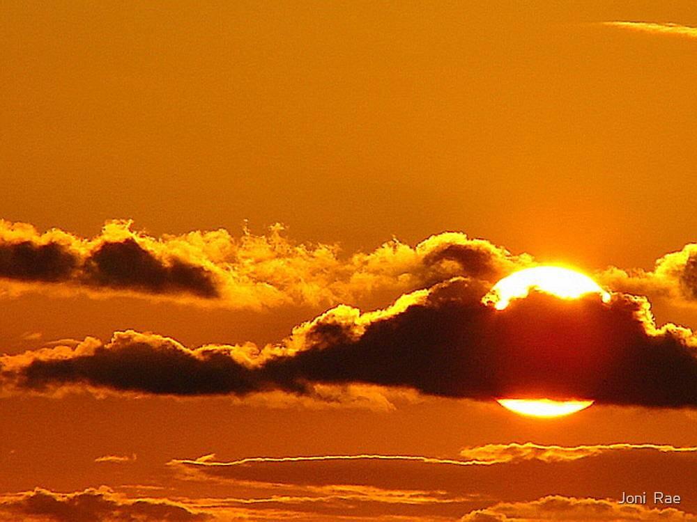 Silken Sunset by Joni  Rae