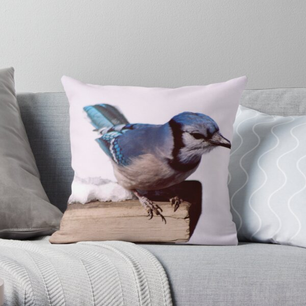 Bluejay Posing For A Nut Throw Pillow