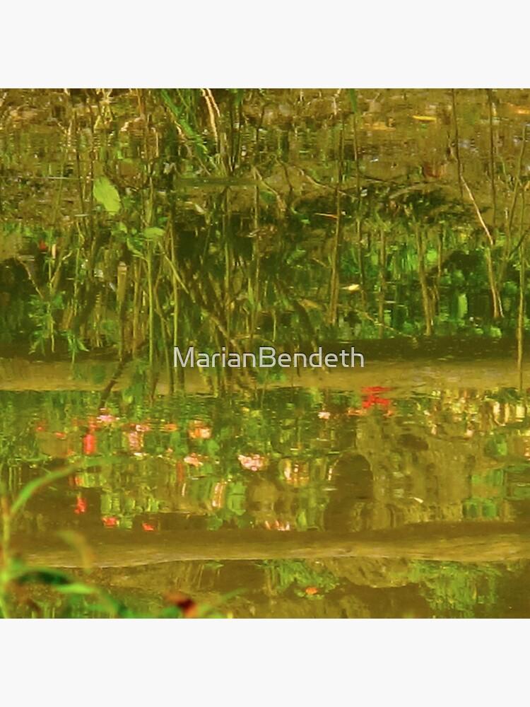 Water flowers von MarianBendeth
