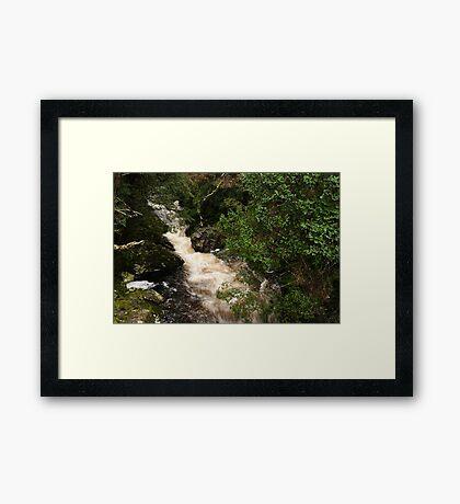 Pencil Pine Creek Framed Print