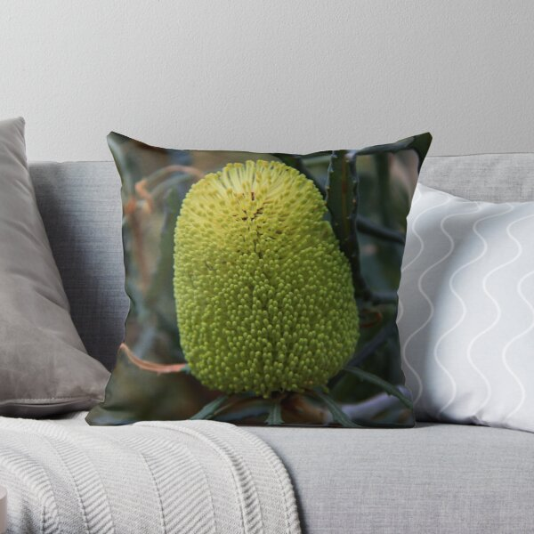 Banksia pilostylis  Throw Pillow