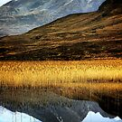 Reflections of Blaven by Karl Williams