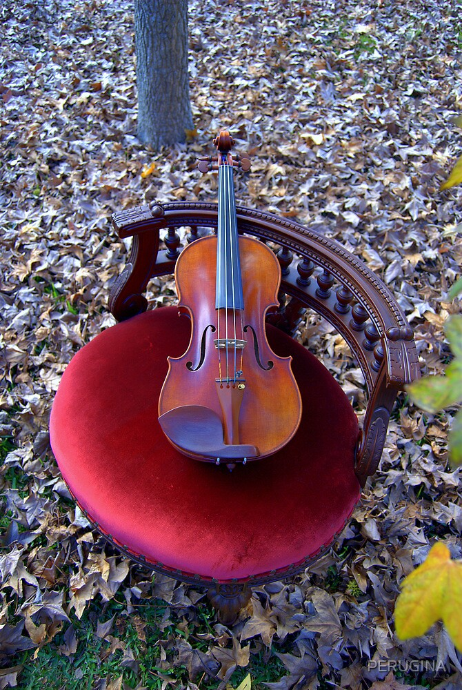 violino su sedia di velluto rosso © 2010 patricia vannucci  by PERUGINA