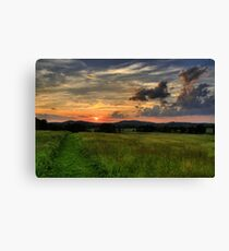 Wolfs in the sky Canvas Print