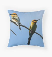 On A Sunny Day Throw Pillow
