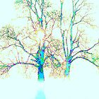 """'MY TREE'S OF LOVE AND LIGHT"""" by Norma-jean Morrison"""