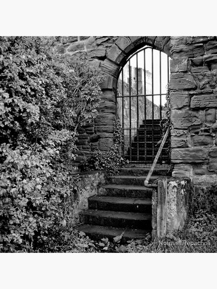 Sneak in the back entrance - Kenilworth - Britain by keystone
