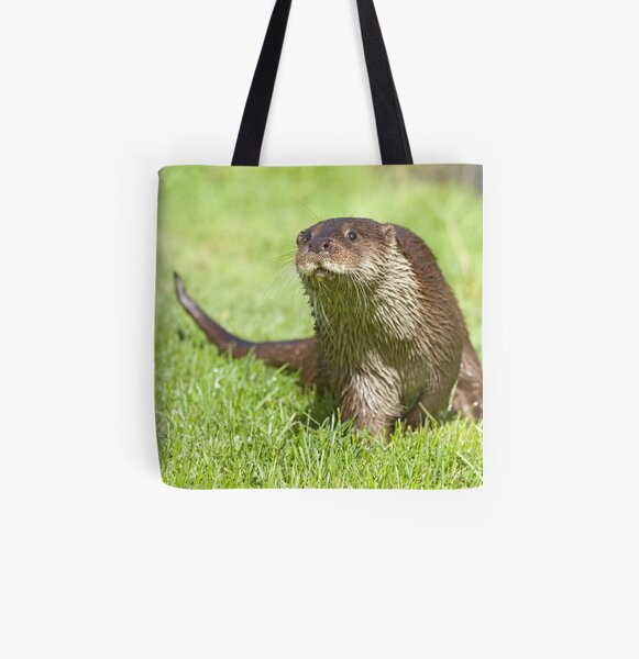 Curious otter All Over Print Tote Bag