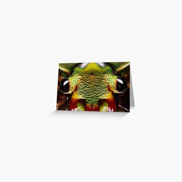 flower beetle 4 x Greeting Card