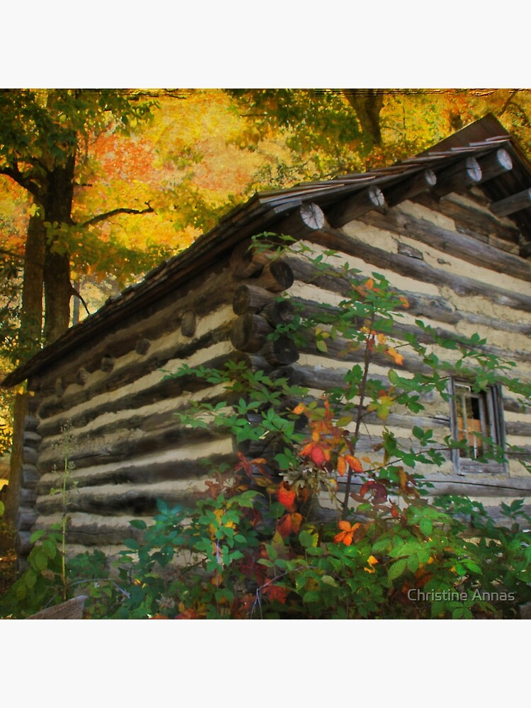 Appalachian Dream Home by 2Bricks