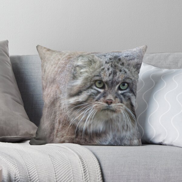 Mini Lions / balls of fur!!! Throw Pillow