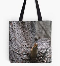 Tawny Frogmouth Nesting Tote Bag