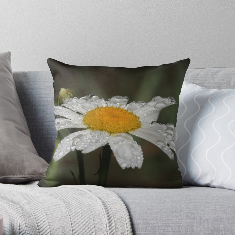 Daisy with dew drops Throw Pillow