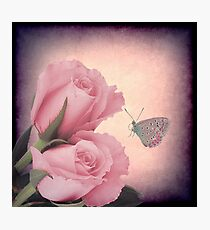 Of Roses and Thorns Photographic Print