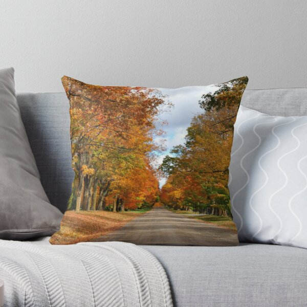 Country Sideroad Throw Pillow