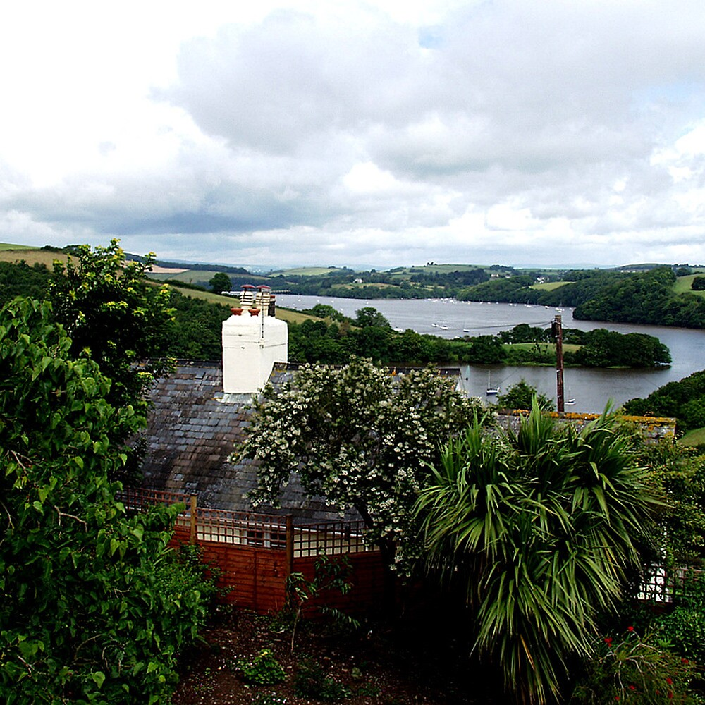 River Dart by Andrew  Bailey