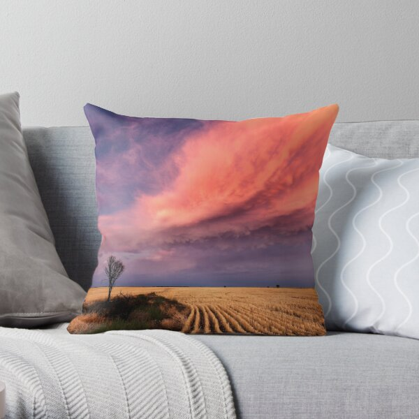 Taking the Long View Throw Pillow