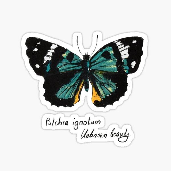 Grüner Schmetterling Pulchra ignotum Sticker