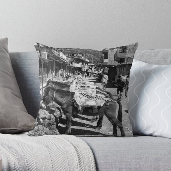 Not just a one horse town? Throw Pillow
