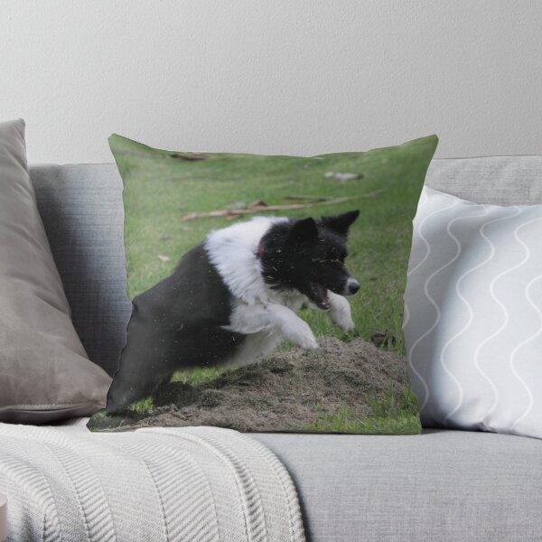Border Collie Pouncing Throw Pillow