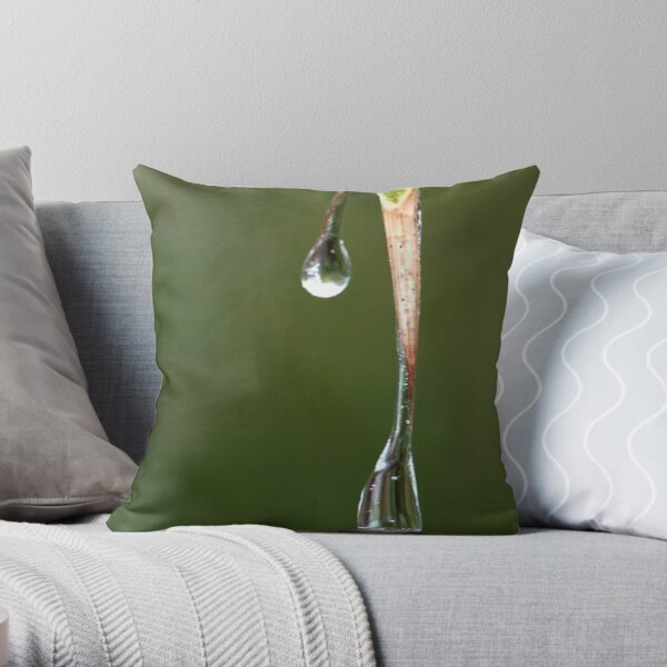 the melting of frozen tears Throw Pillow