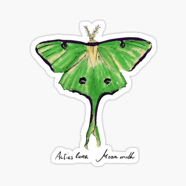 Lunamotte Sticker