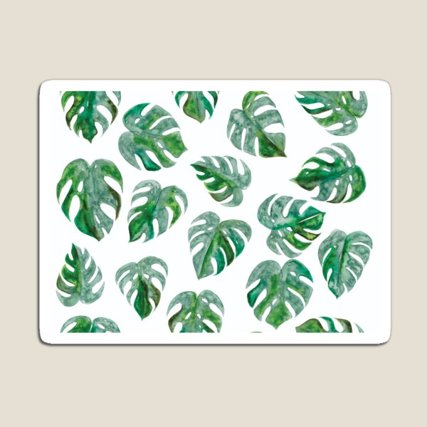 Tropical Monstera Leaf Pattern | White Background Magnet