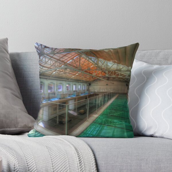 Roman Museum Throw Pillow