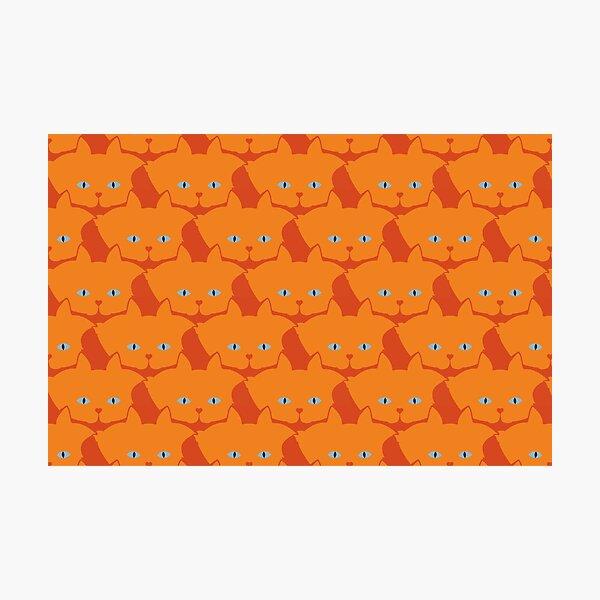 Solid Bright Orange Cat Cattern [Cat Pattern] Photographic Print