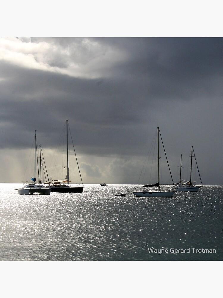 Boats at Store Bay, Tobago by redmoondragon