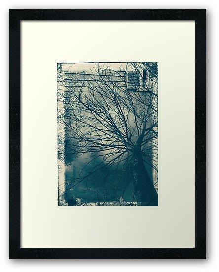 treehouse by Angel Warda