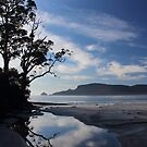 Adventure Bay, Bruny Island by gaylene