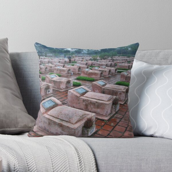 Remembrance of the American war Throw Pillow