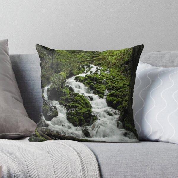 Wahkeena Creek 3112_032505 Throw Pillow