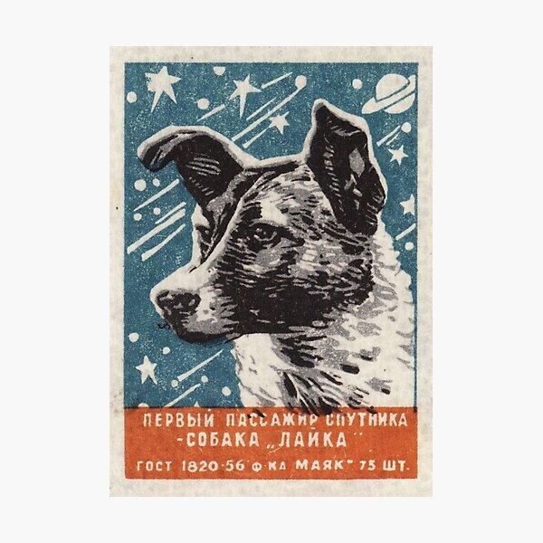 Laika the dog - Soviet Space Art, USSR Matchbox Design, 1957 Photographic Print
