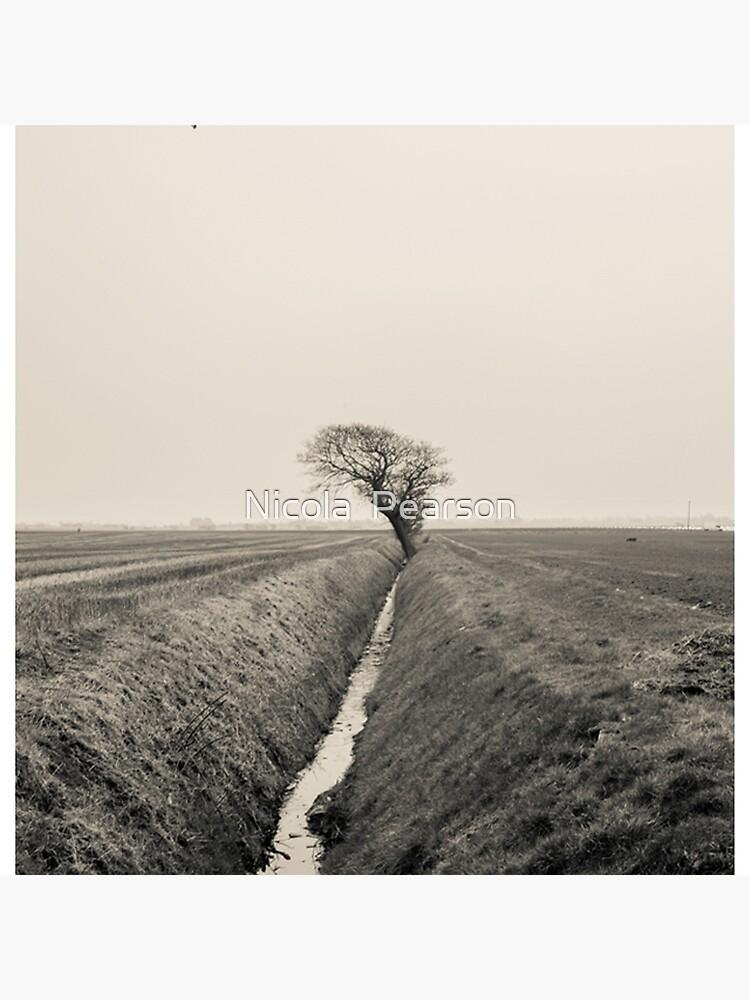 B&W Landscape Triptych III von prestonchick