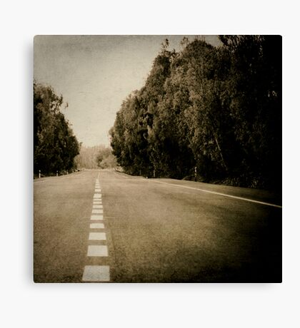 line of road Canvas Print