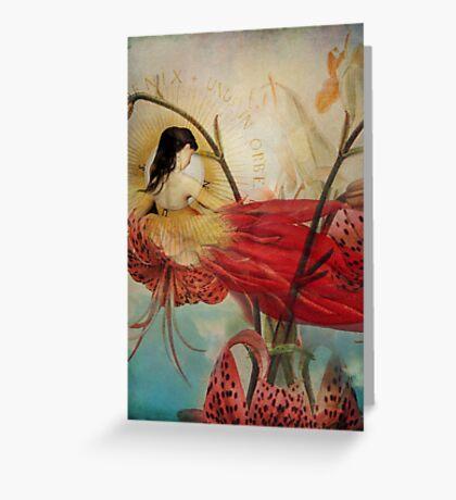 Lilies Wish Greeting Card