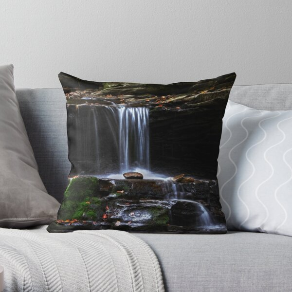 Kitchen Creek # 2 Throw Pillow