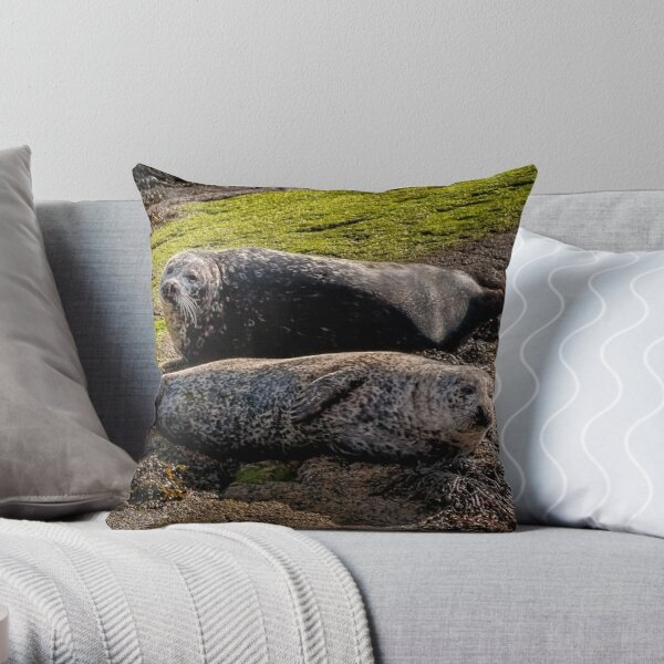 Seal Mates Throw Pillow