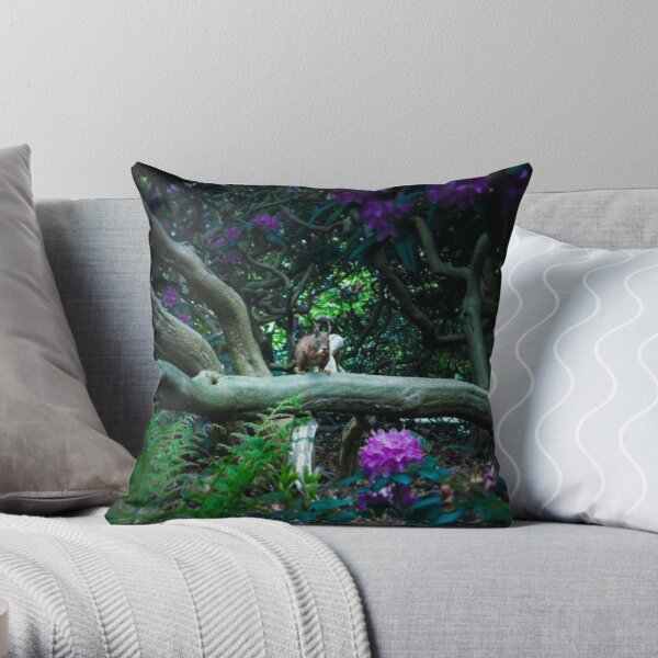 squirrel 005 Throw Pillow