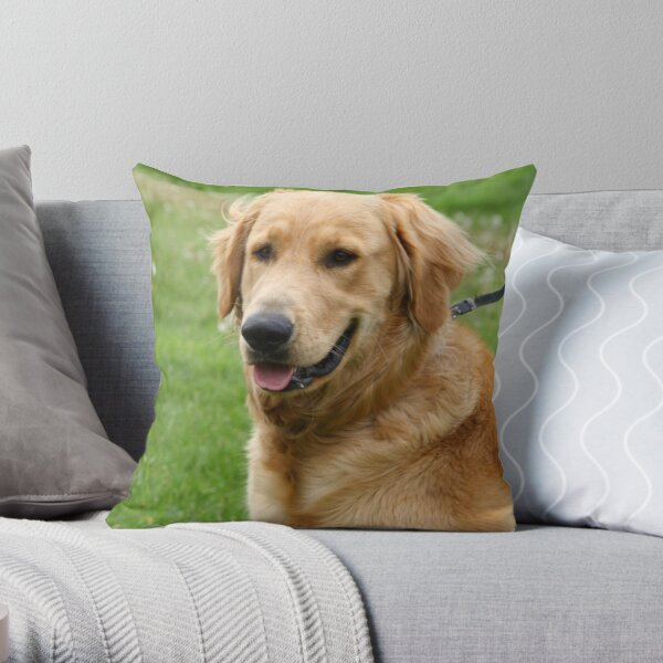 Jordy Throw Pillow