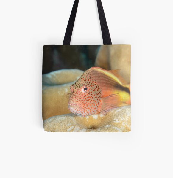 Black-backed Hawkfish - Paracirrhites forsteri All Over Print Tote Bag