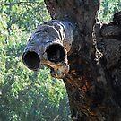 ET Tree by bazcelt