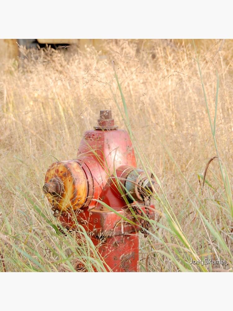 Fire Hydrent in tall grass by JoeySkamel