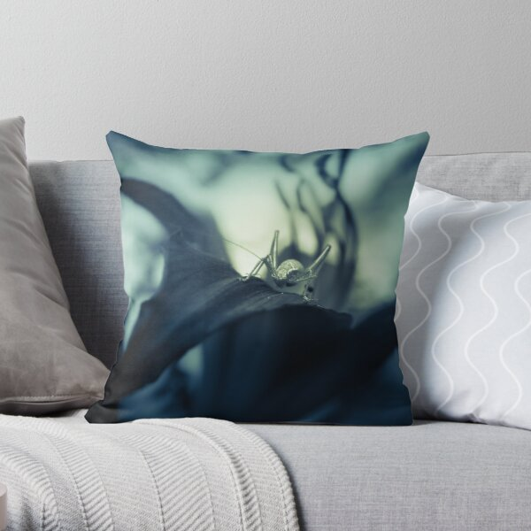 Here's looking at you, Kid (2. version) Throw Pillow