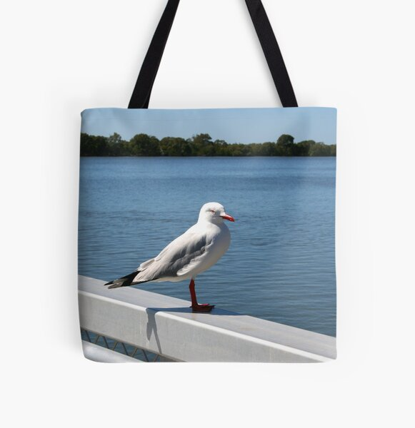 """Day 215 