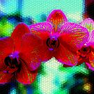 The Amaziing Mosaic Abstract Orchid by Mattie Bryant